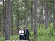Dự án trồng rừng tạo việc làm cho 4,6 triệu lao động
