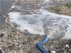 Cần Thơ: Nghiệm thu dự án trạm xử lý nước rỉ rác