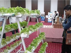 Vườn ươm doanh nghiệp Việt: Khó gọi vốn tài trợ, đầu tư