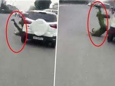 CLIP HOT NGÀY 9/9: Ôtô hất văng cảnh sát rồi bỏ chạy, khỉ đầu chó tấn công báo