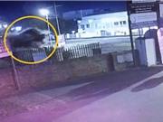 Clip: Audi TTS gây tai nạn kinh hoàng