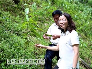 Lạng Sơn đẩy mạnh phát triển tài sản trí tuệ