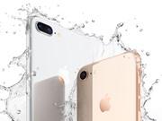 Hé lộ dung lượng pin, RAM của iPhone 8 và iPhone 8 Plus