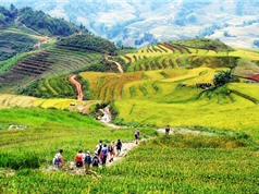 Báo ngoại gợi ý 10 điểm tham quan hấp dẫn nhất Việt Nam năm 2017