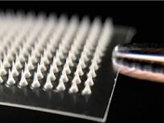 Miếng dán nano giúp đốt cháy mỡ thừa