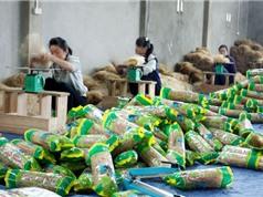 Miến dong Nhất Thiện - đặc sản nổi tiếng của tỉnh Bắc Kạn