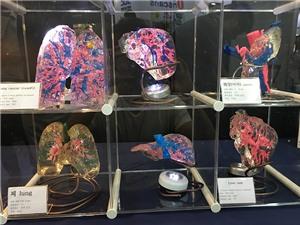 Hàn Quốc dốc sức, dồn tiền phát triển in 3D