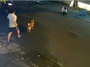 CLIP HOT NGÀY 21/9: Ôtô gây tai nạn khi quay đầu ẩu, đại bàng xé xác báo