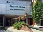Ngắm các mẫu vật về tiến hóa tại Bảo tàng Thiên nhiên Việt Nam