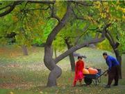 Bí ẩn vùng đất con người thọ trung bình 120 tuổi