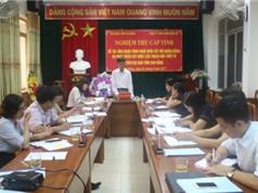 Cao Bằng: Phát triển sản xuất cây dược liệu Thạch hộc Thiết bì