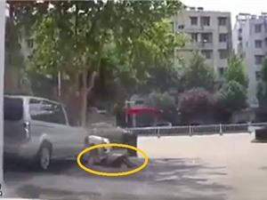 Clip: Ngủ trên vỉa hè, người đàn ông bị ôtô cán qua người