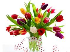 """Clip: """"Bỏ túi"""" một số mẹo hay giúp hoa cắm tươi lâu hơn"""