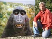 """Ảnh khỉ """"tự sướng"""" và bản quyền tác phẩm không do người tạo ra"""
