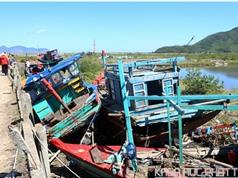 Mỹ dành 1,54 triệu USD hỗ trợ Việt Nam ứng phó thiên tai