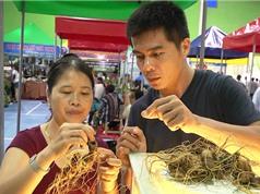 Phiên chợ sâm Ngọc Linh: Người tiêu dùng tận mắt phân biệt sâm thật, giả