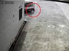 Clip: Đang đi bộ trong sân công ty, nữ công nhân bị xe tải cán chết tại Hải Phòng