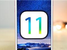 38,5% người dùng nâng cấp lên iOS 11 sau hai tuần phát hành