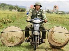 Clip: Dùng xe máy bắt cào cào kiếm tiền triệu mỗi ngày