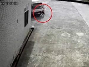 """Nữ công nhân bị xe tải cán chết ở Hải Phòng, """"xe điên"""" húc cảnh sát lên nóc capô"""