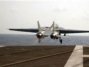 Khám phá chiến đấu cơ F-14 Mỹ từng điều tới Việt Nam