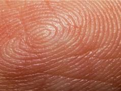 Công nghệ kiểm tra vân tay có thể biết được lịch sử sinh hoạt trong một tháng