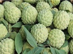 Bắc Giang bình chọn các sản phẩm nông nghiệp tiêu biểu