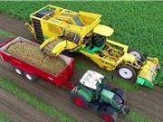 Clip: Xem máy cuốc khoai tây khổng lồ tại Hà Lan