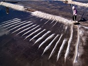 Mãn nhãn trước những hình ảnh đẹp về cánh đồng muối Long Điền