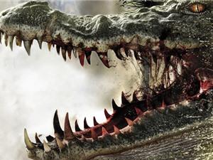 Cái kết không tưởng sau vụ cá sấu ăn thịt người ở Anh