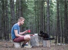 Chàng trai bán sạch gia sản để đi du lịch với… mèo