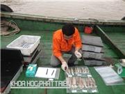 Công nghệ bảo quản mực ống tươi ngon sau 1 tháng