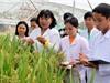 6 nhà khoa học nữ Việt Nam được UNESCO vinh danh