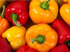 7 lợi ích đáng kinh ngạc ớt chuông mang lại cho sức khỏe