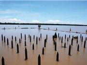 Ngắm dòng sông nổi tiếng bậc nhất trong lịch sử Việt Nam