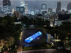 Vườn rau kỹ thuật số có một không hai tại Nhật Bản