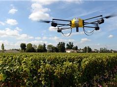 Nông nghiệp chính xác giúp ngăn 25% số vụ mất mùa