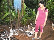 Gia Lai: Nâng cao chất lượng cuộc sống nhờ trồng rau, nuôi vịt