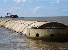 Mô hình đê trụ rỗng ngăn sạt lở ven biển phát huy hiệu quả ở Cà Mau