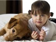 9 lợi ích sức khoẻ không ngờ khi nuôi chó