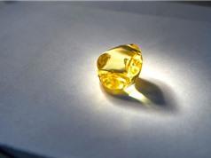 Đào được kim cương vàng cực kỳ quý hiếm
