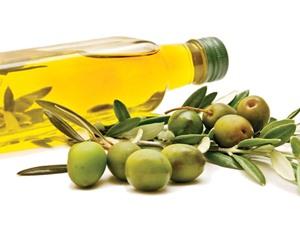 Tác dụng của việc uống nước lá oliu mỗi ngày