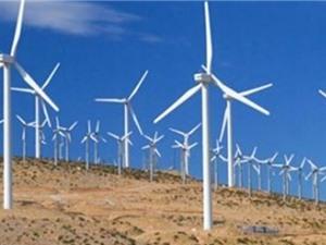 Tiềm năng điện gió của Việt Nam gấp 6 lần công suất dự kiến của ngành điện vào năm 2020