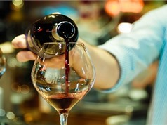 Thói quen uống rượu làm gia tăng nguy cơ 7 loại ung thư phổ biến