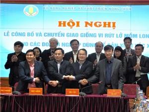 Lần đầu tiên Việt Nam chủ động công nghệ sản xuất vắcxin lở mồm long móng