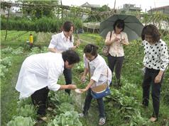 Phát huy hơn nữa hiệu quả của chương trình nông thôn miền núi