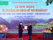 Quýt vàng Bắc Sơn được công nhận Nhãn hiệu tập thể