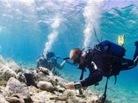 Phát hiện 8 xác tàu 2.000 năm tuổi dưới biển Hy Lạp
