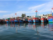Thanh Hóa: Xây dựng dịch vụ hậu cần cho nghề khai thác hải sản xa bờ