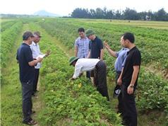Cách để nhà khoa học độc lập tham gia Chương trình Nông thôn - Miền núi